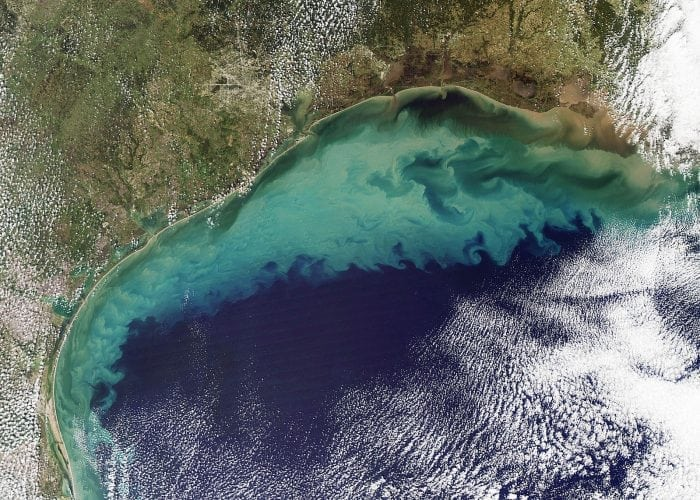 """""""Sediment in the Gulf of Mexico"""" by NASA Earth Observatory is licensed under CC0"""