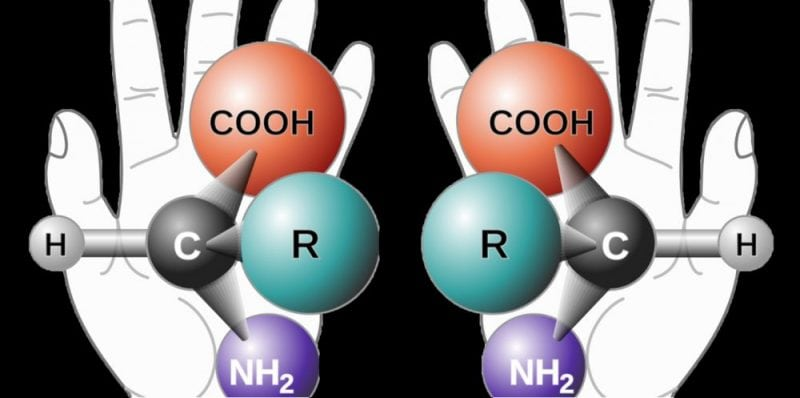 Left-handed and right-handed chiral molecules (Wikipedia)