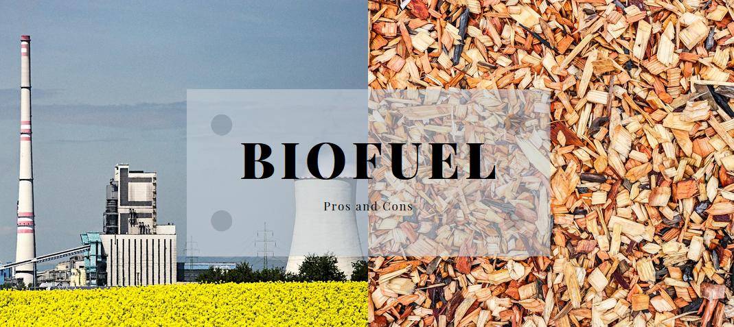 Biofuels Pros And Cons >> Biofuels Pros And Cons | Science Trends