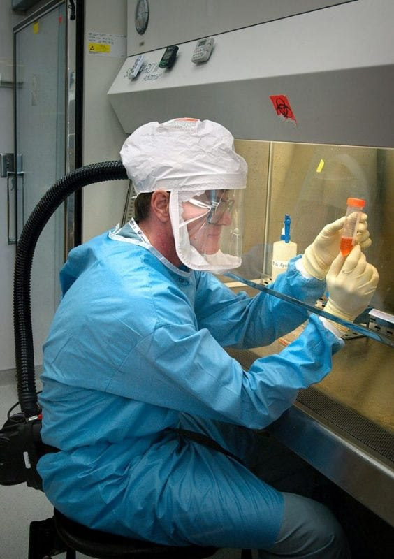 A CDC researcher works with the influenza virus while under biosafety level 3 conditions (equipped with a respirator and inside a biosafety cabinet). Photo: CDC, Public Domain