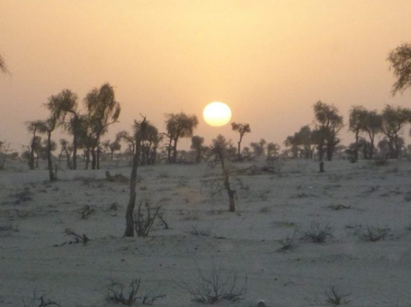 Sunset in Oman. Image: A. Ali