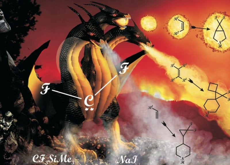 """Synthesis of gem-difluorocyclopropane-derived amines (Credit: Background artwork by Web Design Studio """"ZORELiT"""")"""
