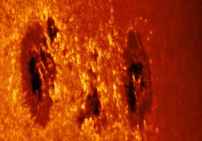 Sunspots (Credit: M. Sobotka, Swedish Solar Telescope, 2007)