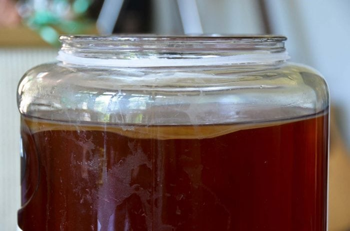 """Kombucha SCOBY, Day 10"" by sk and TheKitchn (via Flickr) is licensed under CC BY-ND 2.0"