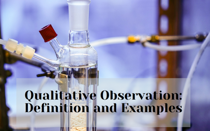 Quantitative Observation: Definition And Examples ...