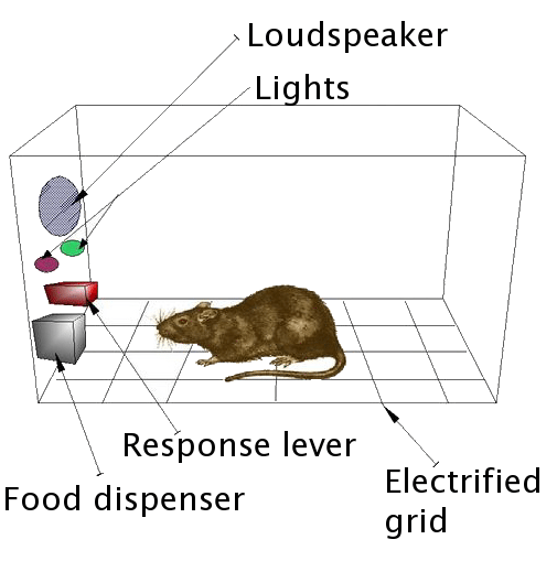"An example of an operant conditioning chamber, also known as a ""Skinner Box"". Photo: By Andreas1 - Adapted from Image:Boite skinner.jpg, CC BY-SA 3.0, https://commons.wikimedia.org/w/index.php?curid=5709267"