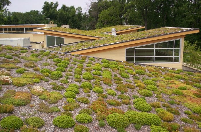 """""""Green Roof at Walter Reed CC"""" by Arlington County via Flickr is licensed under CC BY-SA 2.0"""