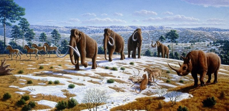 Ice age fauna. Image source: Wikipedia.