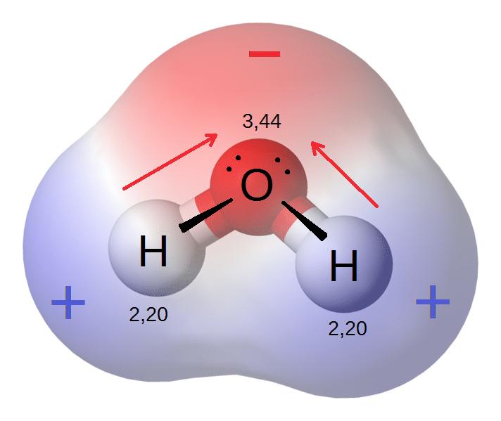 Water Molecule Polarity And Diagram Diy Enthusiasts Wiring Diagrams