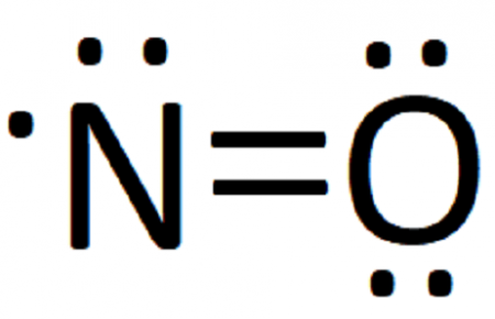 the double bar between the two chemical symbols (=) means that nitrogen and  oxygen share a