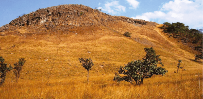 Figure 1. Photograph of a Cu and Co hill (courtesy of Gilles Colinet).