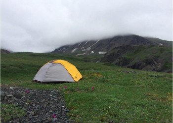 Backpacking in Denali National Park provides a chance to experience Alaska's rugged landscape, grand mountain ranges, and abundant wildlife. Photo Credit: Lorraine Stamberger