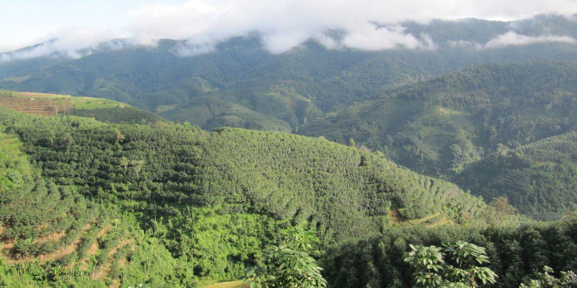 The landscape of the Naban reserve subtropical watershed. Image courtesy Sergey Blagodatsky
