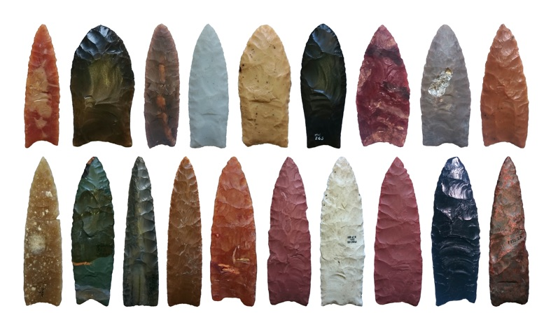 Figure 1. A collection of Clovis-style Palaeo-indian projectile points from the Alan Slade Collection. Prehistoric artifacts such as these are studied routinely by archaeologists in their efforts to understand human cultural history. Image courtesy Norman MacLeod.