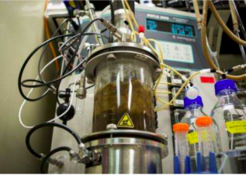 Laboratory-scale bioreactor. Image published with permission.