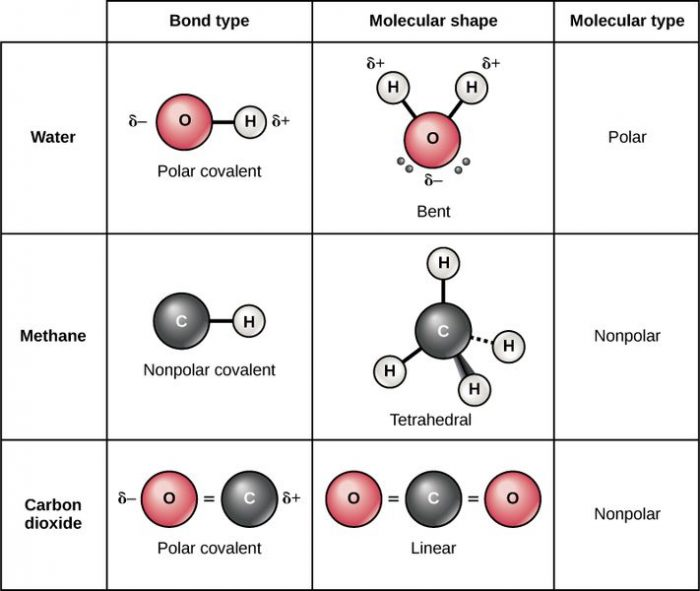 What Is A Nonpolar Covalent Bond Science Trends